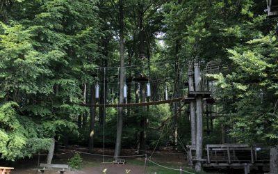 Besuch des Kletterwalds